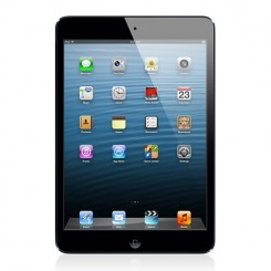 Apple - iPad mini 16GB